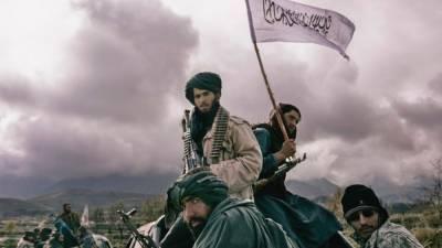 Советник афганского президента признал провал договорённостей с «талибами»