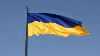Украинские националисты забросали петардами офис Зеленского в Киеве