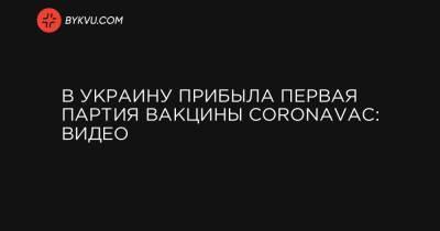 В Украину прибыла первая партия вакцины CoronaVac: видео