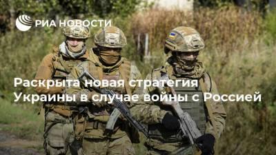 Раскрыта новая стратегия Украины в случае войны с Россией