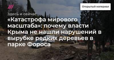 «Катастрофа мирового масштаба»: почему власти Крыма не нашли нарушений в вырубке редких деревьев в парке Фороса