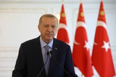 Эрдоган поддержал минские соглашения для урегулирования кризиса в Донбассе