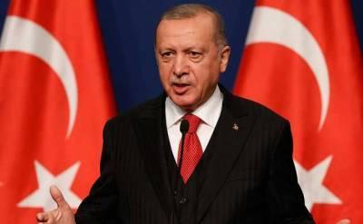 Эрдоган поддержал предоставление Украине ПДЧ по НАТО