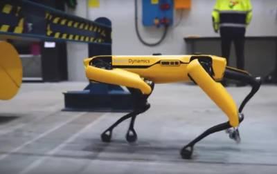 Полиция Нью-Йорка вынуждена была уволить пса-робота Boston Dynamics и мира