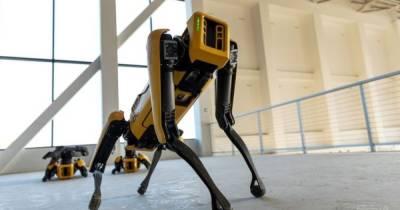 """""""Жуткая машина"""". Полиция Нью-Йорка отказывается от роботов-собак Spot (видео)"""