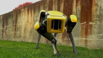 Робопса Boston Dynamics уволили из нью-йоркской полиции