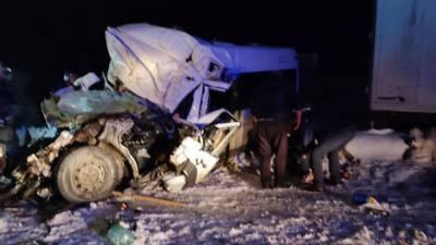 Три человека погибли при ДТП с участием Mercedes и фуры под Рязанью