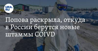 Попова раскрыла, откуда в России берутся новые штаммы COVID