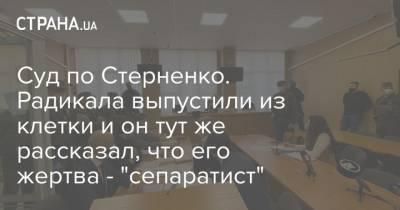 """Суд по Стерненко. Радикала выпустили из клетки и он тут же рассказал, что его жертва - """"сепаратист"""""""