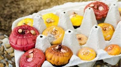 Как правильно посадить гладиолусы, чтобы получить пышные букеты осенью: все секреты