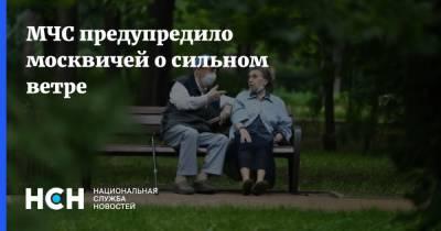 МЧС предупредило москвичей о сильном ветре