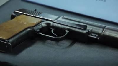 Президент подписал указ о запрете продажи оружия и патронов в Петербурге на время Евро-2020
