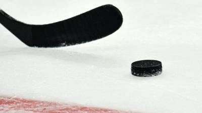 Сборная России дозаявила на ЧМ пятерых хоккеистов
