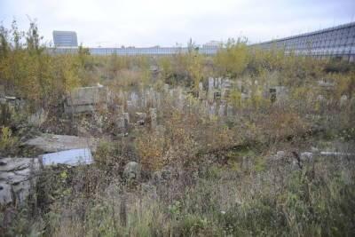 Петербуржцы потребовали создать самостоятельный парк-заповедник на Охтинском мысе