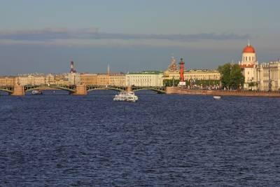 В Петербурге ищут подрядчика для ремонта Биржевого моста
