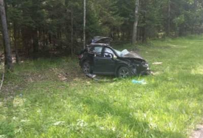 Три человека погибло в ДТП на трассе «Кола» в Ленобласти