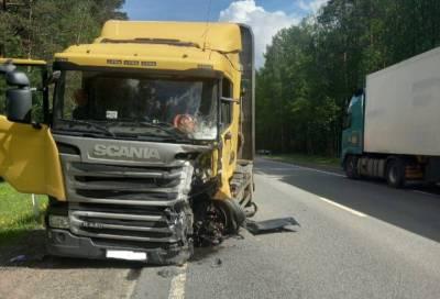 Прокуратура проверит смертельное ДТП с лесовозом на трассе «Кола» в Ленобласти