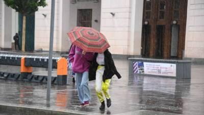 МЧС предупредило о сильном дожде, грозе и ветре в Москве