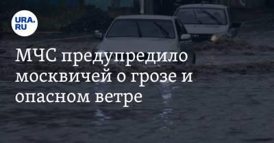 МЧС предупредило москвичей о грозе и опасном ветре