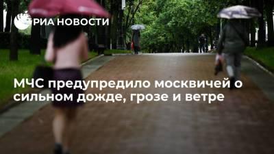 МЧС предупредило москвичей о сильном дожде, грозе и ветре