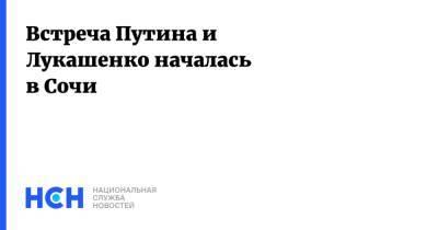 Встреча Путина и Лукашенко началась в Сочи