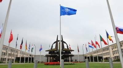 В НАТО действуют российские агенты влияния – украинский эксперт