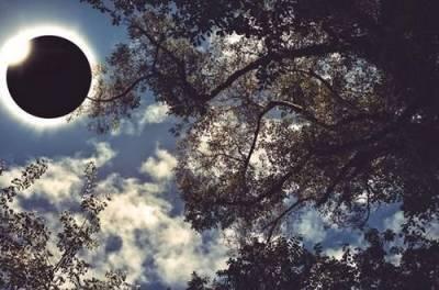 Солнечное затмение: украинцы летом смогут увидеть редчайшее явление