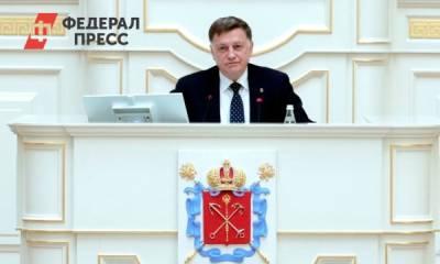В преддверии выборов петербургские единоросы проведут партийную конференцию