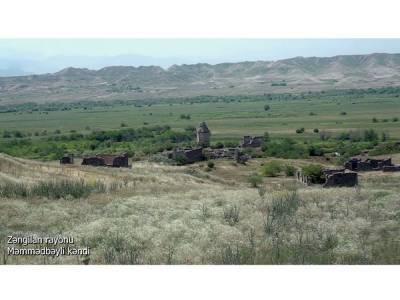 Освобожденное село Мамедбейли Зангиланского района (ВИДЕО)