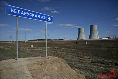 «Несмотря на все эти крики». Российский посол заявил, что Литва получает электроэнергию с БелАЭС и не собирается от нее отказываться