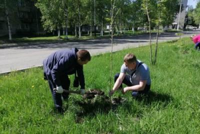 В Хабкрае высадили 12 тысяч деревьев в рамках акции «Сад памяти»
