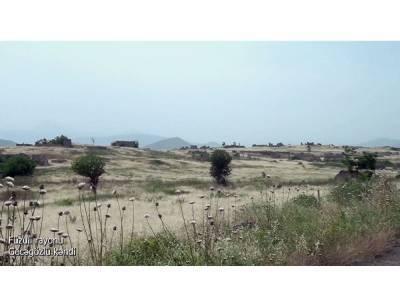 Освобожденное село Геджагезлю Физулинского района (ВИДЕО)