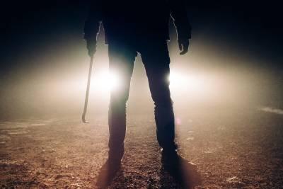 «Я проломлю тебе череп»: подробности жуткого убийства в Плюсском районе