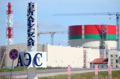 Д. Крейвис призывает ЕС требовать отсрочки начала коммерческой деятельности БелАЭС