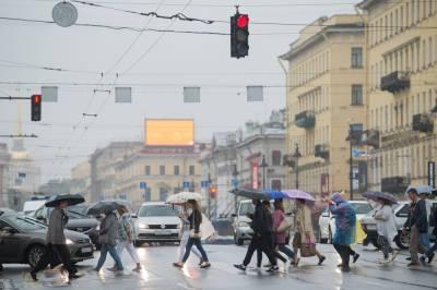 Синоптик предупредил петербуржцев о грозе и порывистом ветре в субботу