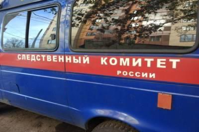 ТАСС: названа причина аварии, в которой погибла оперная певица Волкова