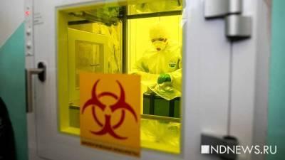 В Курганской области суточный прирост по коронавирусу остается стабильным