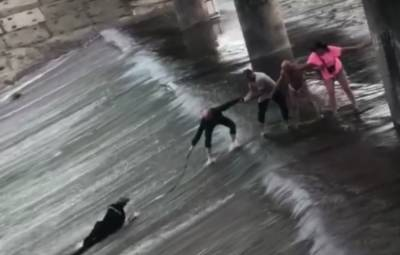 Начало уносить течение: велосипедист упал с дамбы в Харькове, момент попал на видео