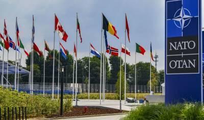 Приманка для России: почему НАТО готово отказаться от ракет в Европе