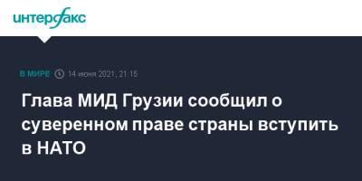 Глава МИД Грузии заявил, что вступление страны в НАТО зависит от блока