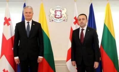 «Дежурные заявления»: что кроется за визитом президента Литвы в Грузию?