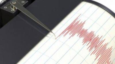 Четыре землетрясения магнитудой до 4,1 произошли рядом с Курильскими островами