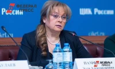 Памфилова раскритиковала губернатора Санкт-Петербурга