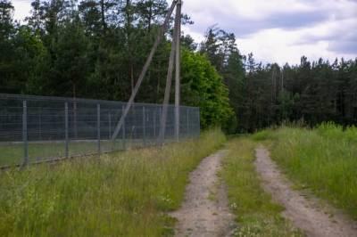 Литва готова построить ограждение на всей границе с Беларусью