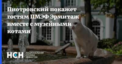 Пиотровский покажет гостям ПМЭФ Эрмитаж вместе с музейными котами