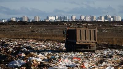 """""""Не наш метод"""": Дрозденко зарёкся не сжигать мусор в Ленобласти"""