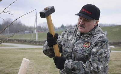 После записи переговоров — абсурдные версии: что важнее всего для Лукашенко (Delfi, Литва)