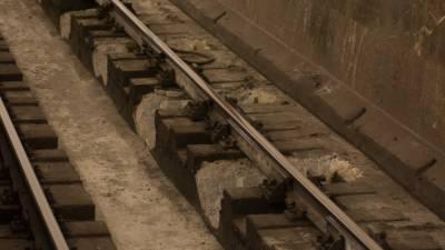 Движение в метро Петербурга восстановлено после падения пассажира на рельсы