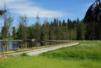 В парке Монрепо подходит к финалу благоустройство долины «Розенталь»