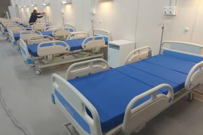Ежедневно в Петербурге фиксируется свыше 900 случаев госпитализации